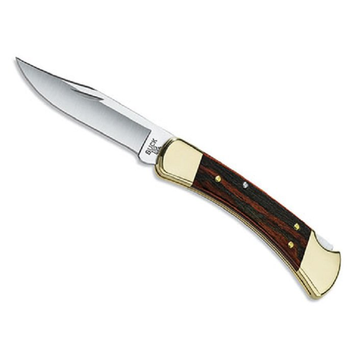 Buck Folding Hunter